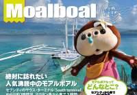 絶対に訪れたい人気沸騰中のモアルボアル&ペスカドール島でダイビング‼
