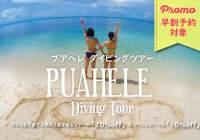 早割予約プロモ>「PUAHELE Diving Tour(プアヘレダイビングツアー)」