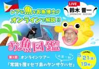 セブ島オンラインツアー|レアな魚をお魚博士がオンラインで解説!
