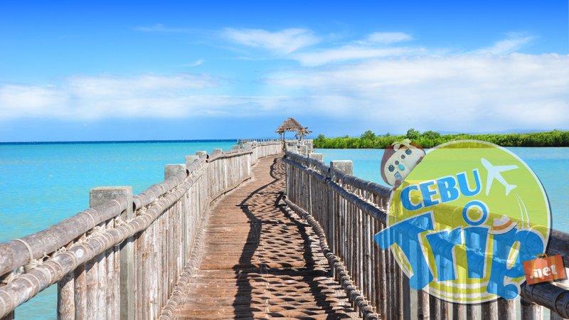 【zoomバーチャル背景対応】オランゴ島(Olango Island) 海と桟橋