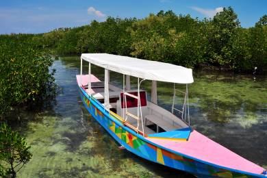 オランゴ島(マングローブとバンカーボート)